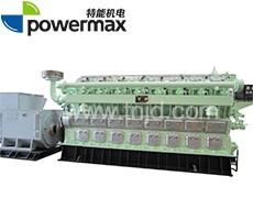 300系列天然气发电机组