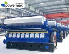 双燃料发电机组(生物质发电)