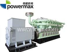 300系列沼气发电机组
