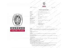 出口欧盟BV出货检测证书